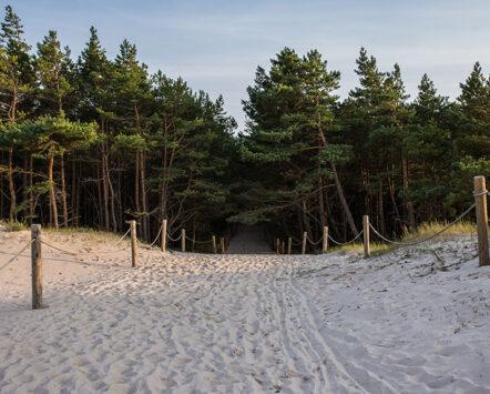 Plaże i wydmy